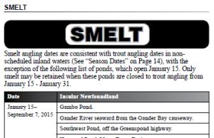 Smelt Fishing 2015 Post