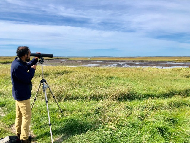 Bruce Rodrigues birding in Cape Freels